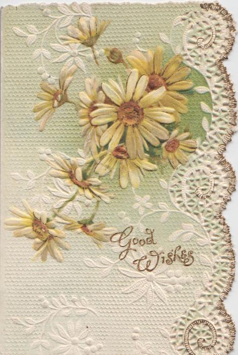 GOOD WISHES in gilt below white & yellow daisies, all over light green  & white floral background, embossed