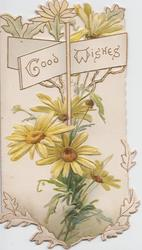 GOOD WISHES on signpost, yellow daisies below & behind, perforated, embossed