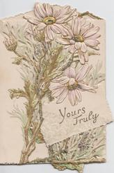TRULY YOURS in gilt, white daisies above & behind, heavily perforated & glittered, embossed