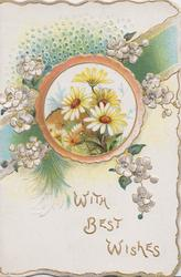WITH BEST WISHES white daisies in circular  inset, white wild roses & green ribbon design