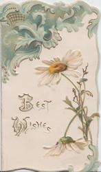 BEST WISHES white daisies lower right, large green design upper left, embossed