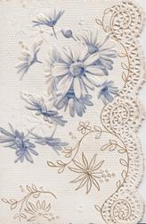 no front title blue daisies above & right of perforated design