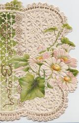 GOOD WISHES white daisies & ivy leaves on very heavily perforated front