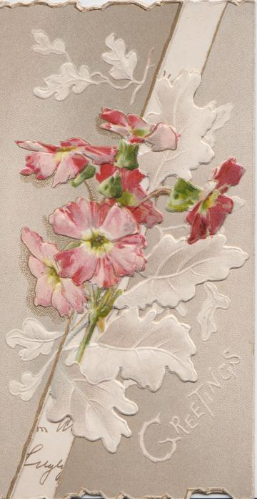 GREETINGS in white at base of right flap  pink dianthus & stylised oak leaves on left flap