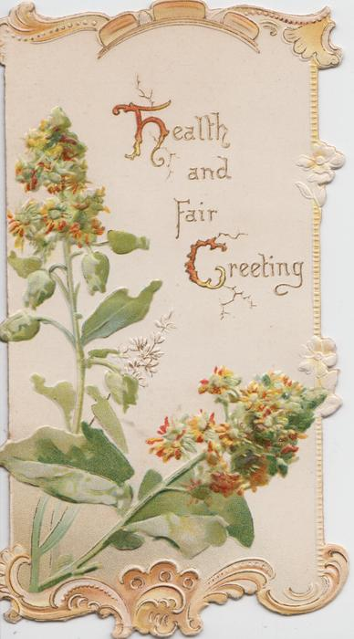 HEALTH AND FAIR GREETING (H & G illuminated) above mignonette, designed borders