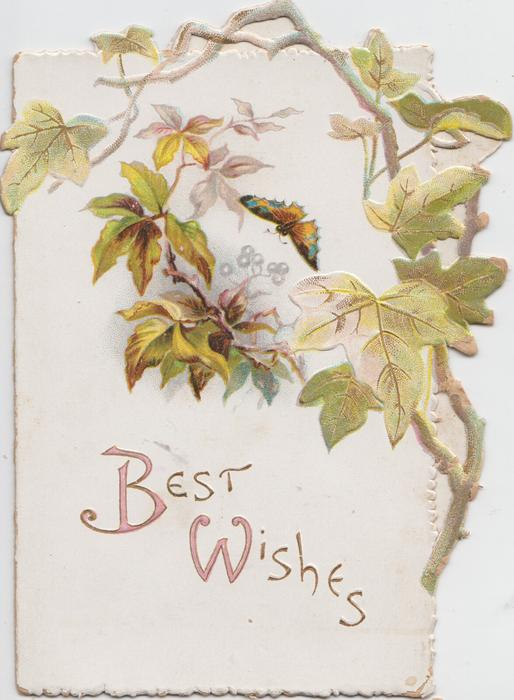 BEST WISHES in gilt, virginia creeper leaves above right, butterfly