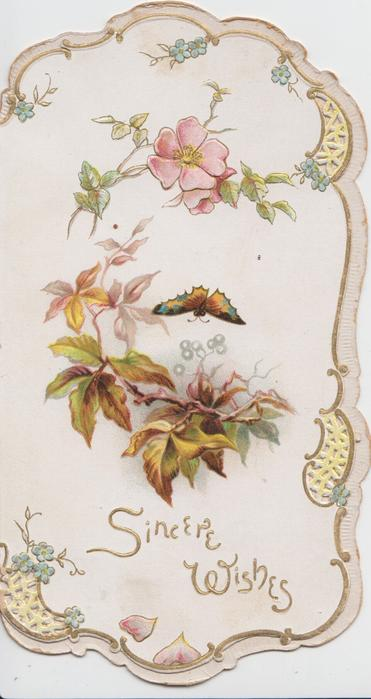 SINCERE WISHES in gilt below virginia creeper leaves & butterfly, single wild rose at top