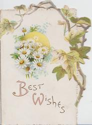 BEST WISHES(illuminated B&W) below white daisies in front of sun, ivy above right