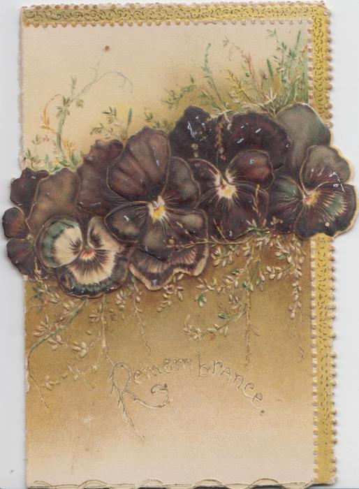 REMEMBRANCE in gilt below line of deep purple pansies, golden background, gilt design top & right