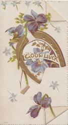 GOOD LUCK in gilt in horseshoe, violets around, bunch of violets & sparse ginkgo leaves on back of right flap