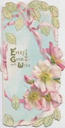EVERY GOOD WISH in gilt, pink & white wild roses below right, leaves above & below, pink bow left