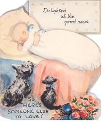 DELIGHTED AT THE GOOD NEWS -- SO THERE'S SOMEONE ELSE TO LOVE baby sleeps in bed, black dog and cat look on, flowers right