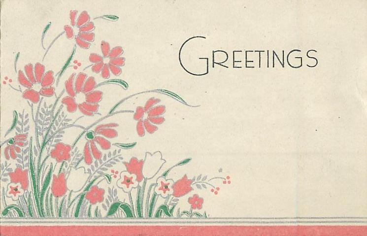GREETINGS pink flowers left, pink bottom border