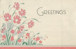 GREETINGS pink flowers left, pink bottom border