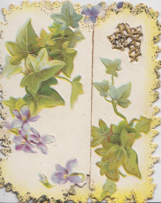 no front title, ivy & violets on both front flaps  & violets on back centre