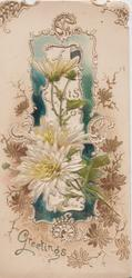 GREETINGS in gilt below white chrysanthemums in front of elaborate green & gilt ornate design