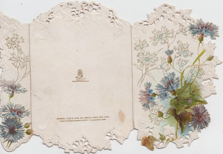 no front title, blue cornflowers & ivy on front panels with stylised cornflower images