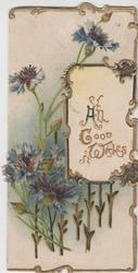 ALL GOOD WISHES in gilt on gilt bordered white inset blue cornflowers left