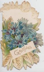 GREETINGS in gilt on white inset below blue cornflowers, yellow crocus below inset