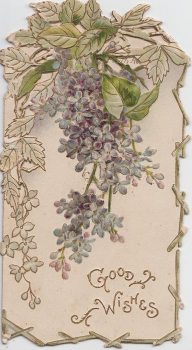 GOOD WISHES in gilt under purple lilac, designed margins, leaves at top, embossed