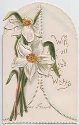 WITH ALL GOOD WISHES in gilt on right front flap, narcissi on left front flap