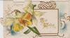 BEST WISHES (B & W illuminated) on white inset yellow daffodils left, gilt & white design, embossed