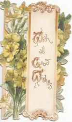 WITH ALL GOOD WISHES (W,G,W illuminated) on white panel, yellow primroses