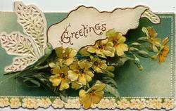 GREETINGS in gilt on white panel & design, yellow primroses below, green background