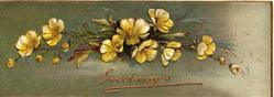 GREETINGS  in gilt below yellow primroses, green background, embossed