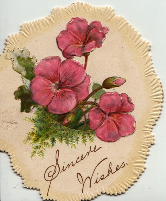 SINCERE WISHES below pink geraniums on oval shaped card