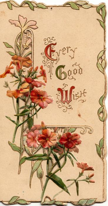 EVERY GOOD WISH (E,G,W illuminated) on white background, red & pink wallflowers beside & below