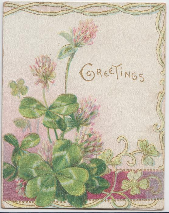GREETINGS in gilt right & above clover flowers & leaves & stylised clover & marginal designs