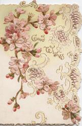 GOOD WISHES  in gilt, spray of cherry blossom above & around on perforated front flap