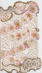 WISHES in gilt design at base, white & pale pink apple blossom in chains above on very perforated front