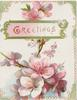 GREETINGS (G illuminated) in gilt in green bordered inset, spray of cherry blossom behind & below