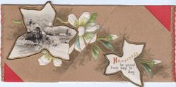 HAPPINESS BE YOURS FROM DAY TO DAY on black & gilt bordered leaf shaped inset, white clematis, rural winter inset