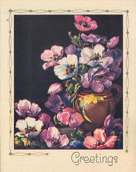 GREETINGS anemones, black background