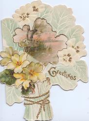 GREETINGS in gilt right, yellow primroses below large perforation revealing large watery rural scene with water-lilies