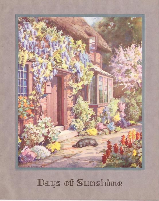 DAYS OF SUNSHINE black dog sleeps on path next to cottage lined with abundant flowers