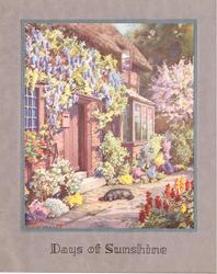 DAYS OF SUNSHINE black dog sleeps on path next to cottage lined with abundant flowers