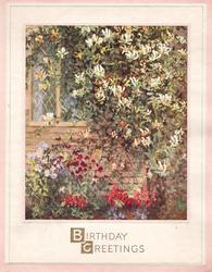 BIRTHDAY GREETINGS in gilt, cottage window covered in prominent flowering vine, peach, cream & thin green borders