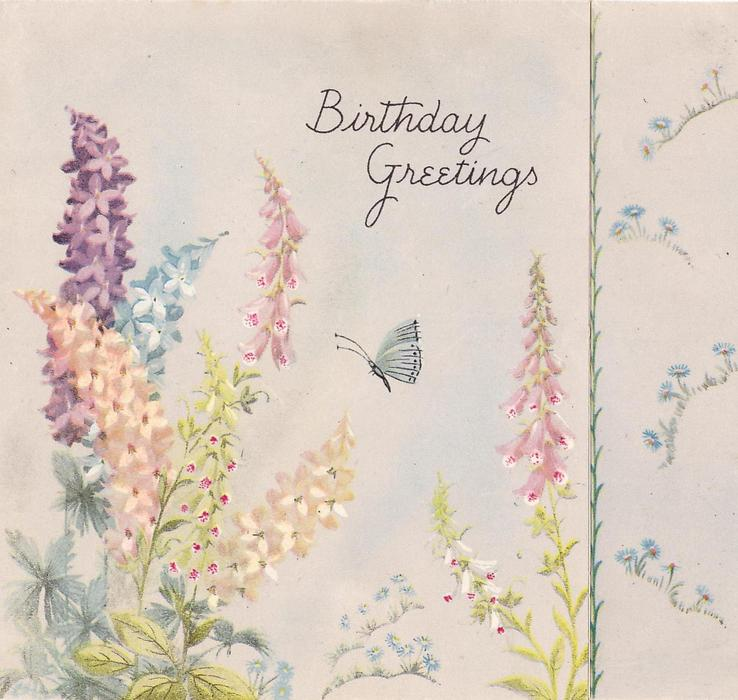 BIRTHDAY GREETINGS above butterfly, foxgloves surround, hyacinths left, panel small blue flowers right