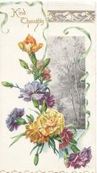 KINDLY THOUGHTS in gilt above many coloured carnations, rural inset on right flap