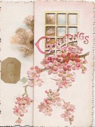 GREETINGS across perforated window, pink cherry blossom across 3 panels, watery rural inset left