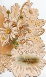 GREETINGS in gilt, many white daisies used in elborate perforated design, small inset lower right, embossed