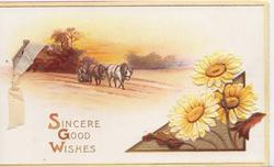 SINCERE GOOD WISHES(S.G.W. illuminated) emboissed  yellow daisies in design lower right, rural scene above