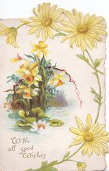 WITH ALL GOOD WISHES yellow daisies round  watery, rural scene with daffodils & water lily