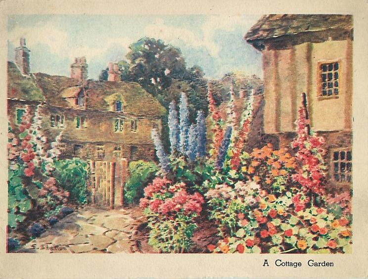 A COTTAGE GARDEN prominent flower gardens with stone path left leading to wooden gate, cottages behind