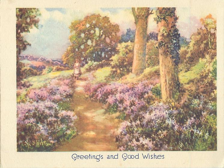GREETINGS AND GOOD WISHES woman in distant view on rural path lined with purple flowers, two tree trunks right
