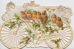 GREETING in gilt, 7 English robins perch on holly in front of bicycle in elaborate perforated white & yellow design